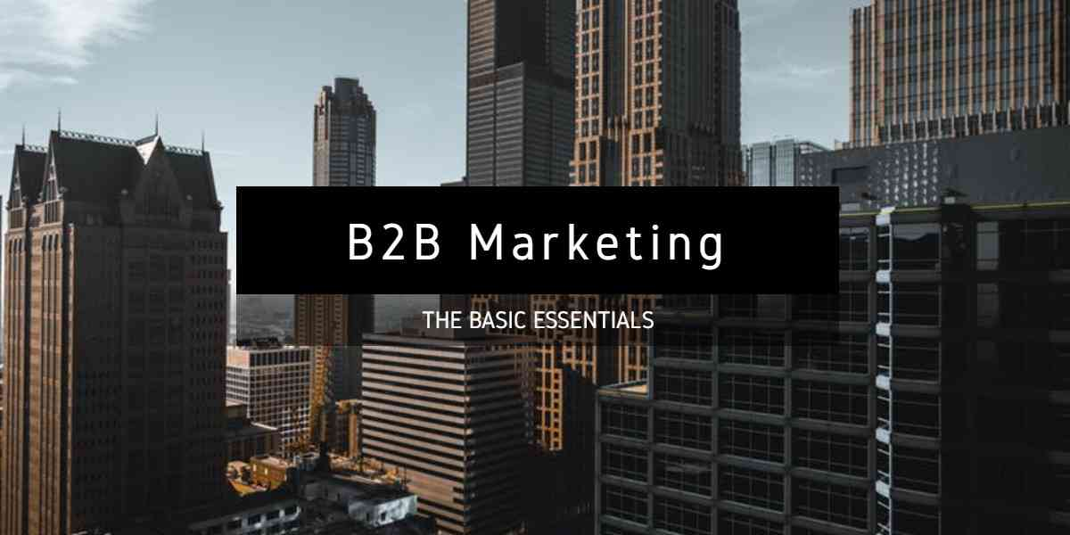 B2B Marketing Guide: Strategies and Tools